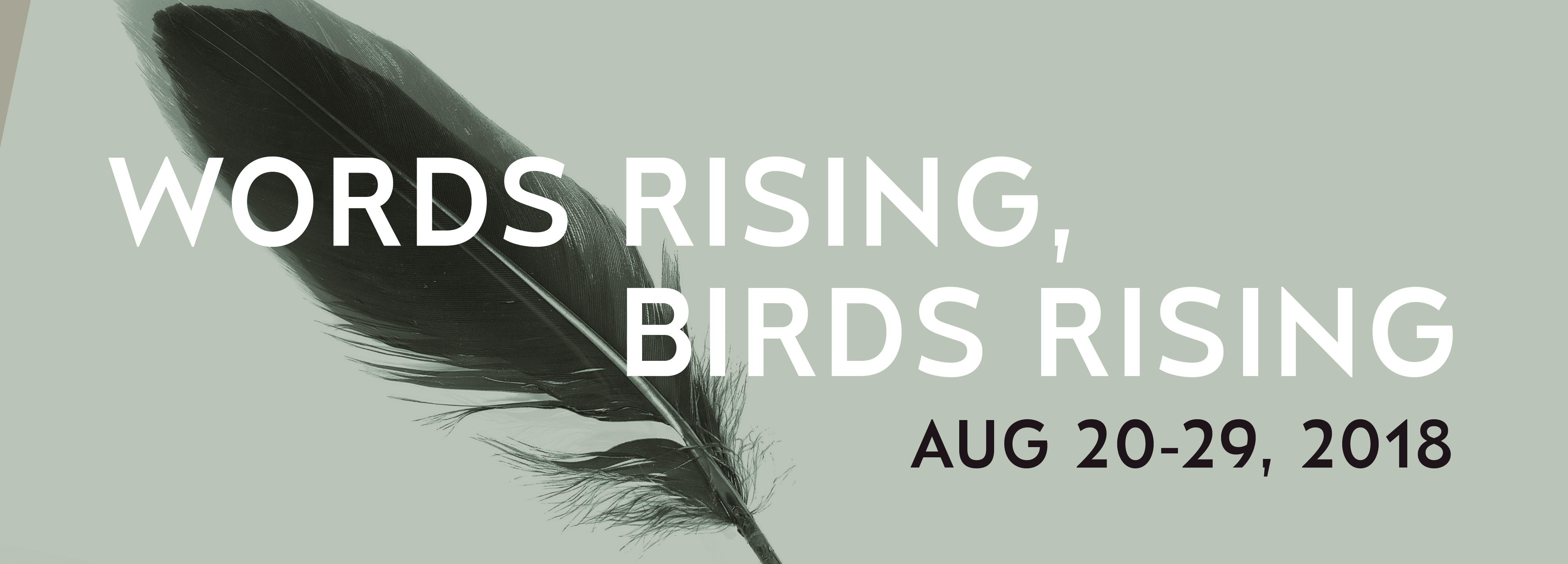 Words Rising, Birds Rising